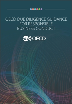 Due diligence guidance 2018