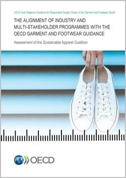 alignment-assessment-garment-footwear-250x350